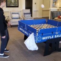 Wiffle Ball Game Rental